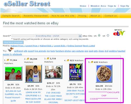 Jan 17, 2008 eBay Pulser